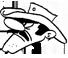 Extermination de Guêpes (Gestion parasitaire Dalton)